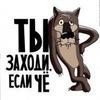 Кот Лунтик